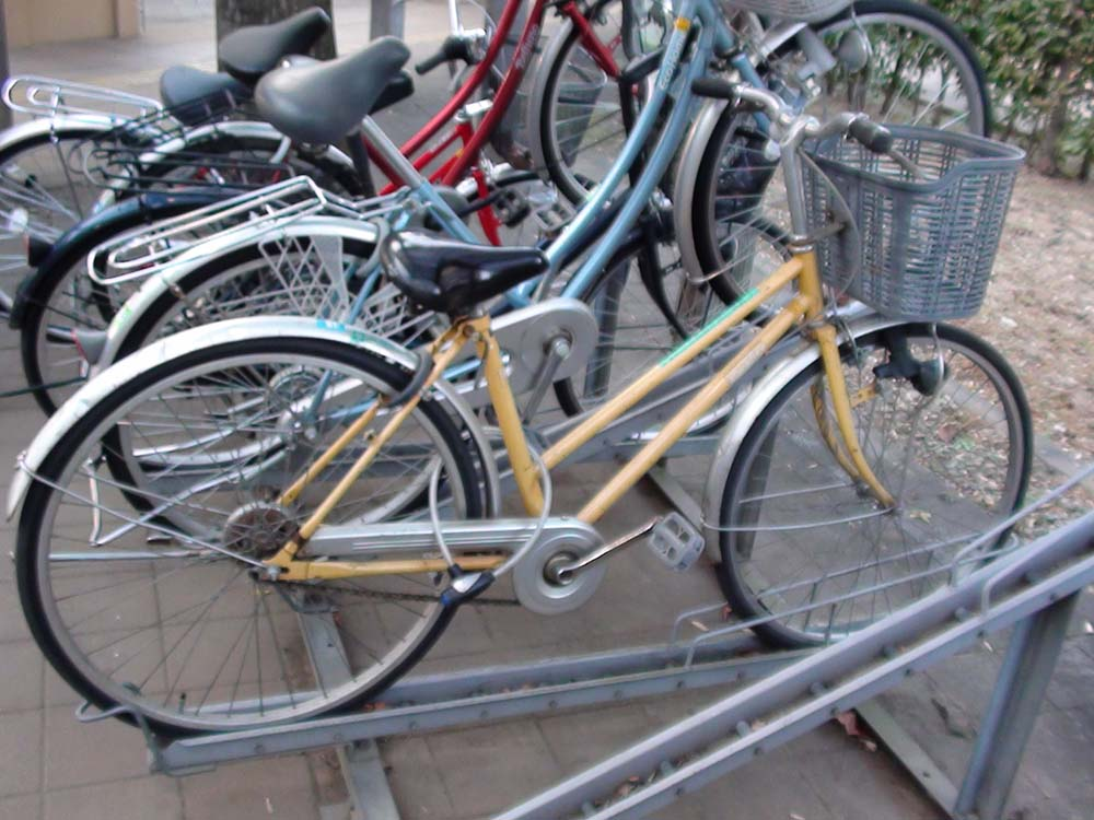 Andando de Bicicleta no Japão Tadaima