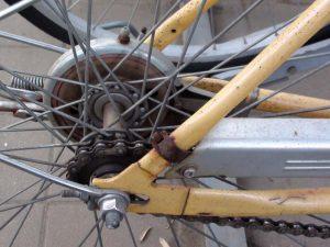 Andar de bicicleta no Japão Tadaima