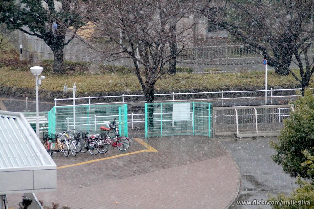 Primeira neve em Tóquio Tadaima