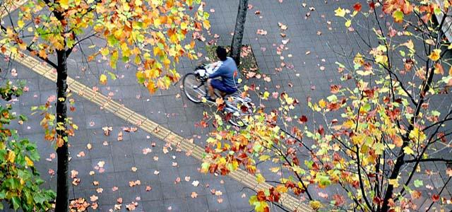Andar de bicicleta do Japão Tadaima